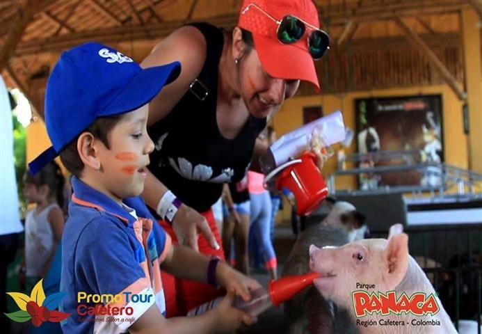 Parque Agropecuario Panaca, donde disfrutas con la familia y aprendes  con los animales