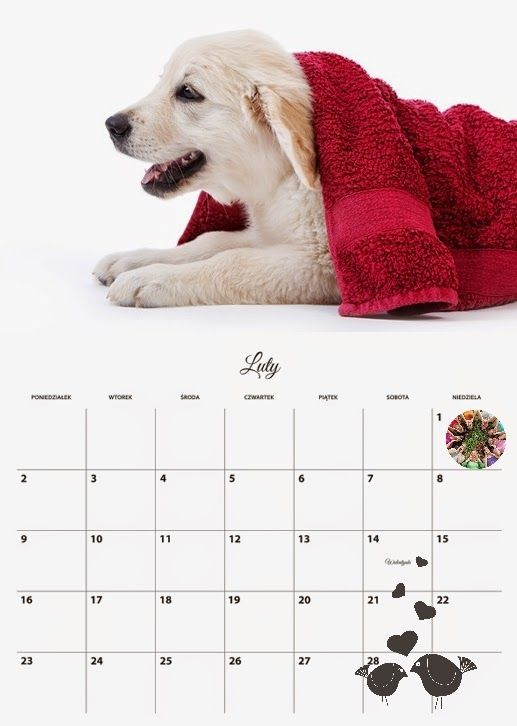 Fotokalendarz Planer z paczki do izziBook Maker