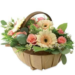 Peach Trug - A country cottage garden style trug arrangement with cream gerberas and peach roses, with scented herb foliage and greenery - Sympathy Flowers | Funeral Flowers UK