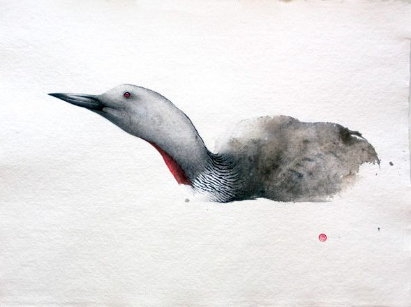 Karl martens Red-throated Diver