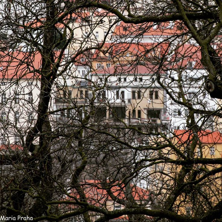 #Prague  a #vew to Pražský hrad  #Прага #прага #czech_insta #czechstagram #czechrepublic #פראג #צכיה #urban #cz #igerscz #igersisrael #instamood #instatravel #travelling #your_world_live #instatravel