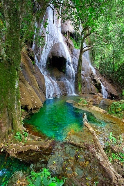 ✯ Waterfall in Bonito, Mato Grosso do Sul, Brazil