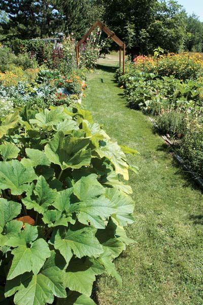 vegetable garden ideas minnesota vegetable garden ideas minnesota