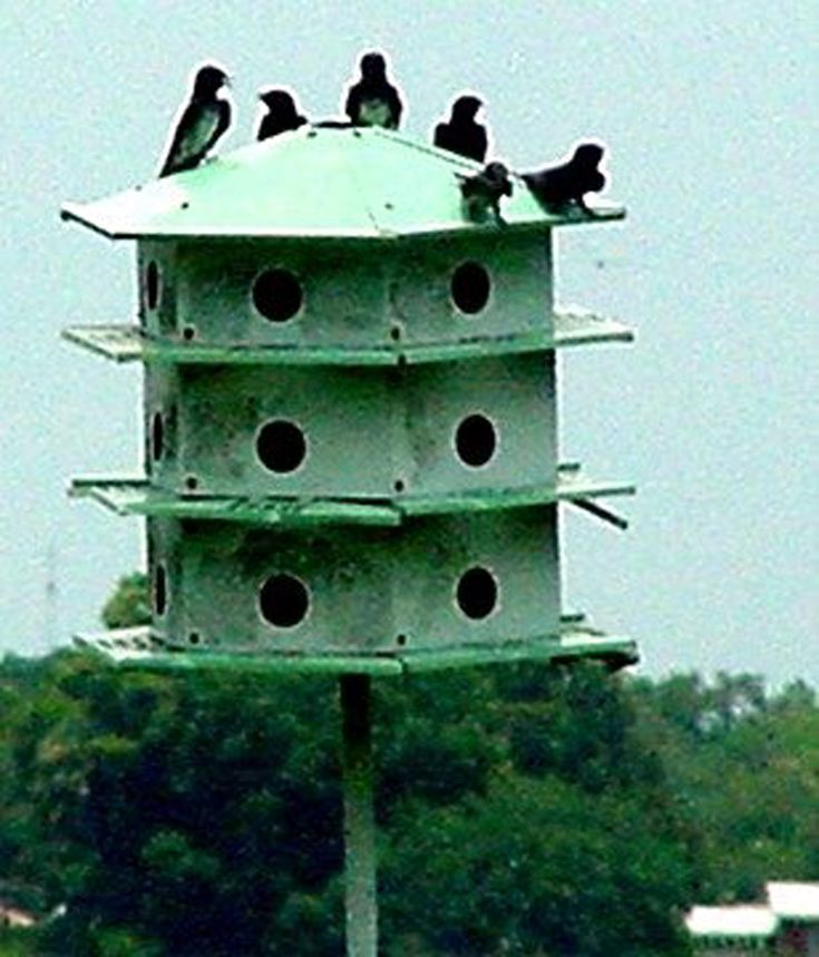 248 best bird houses images on pinterest | wooden bird houses