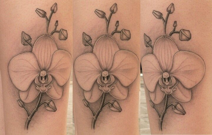 Orchid tattoo Tattoo inspiration | tattoos picture orchid tattoo This is exactly what I want!!!