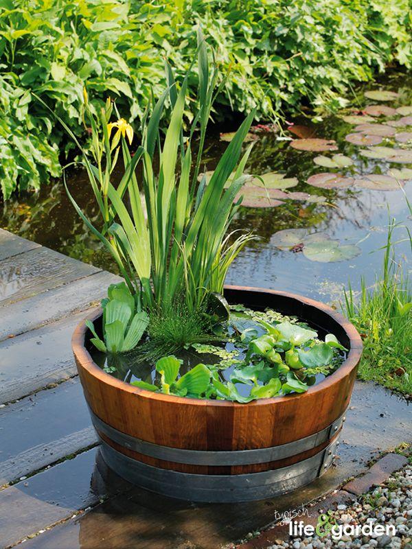 Een mooie houten ton kan ook perfect dienen als een mini-vijver