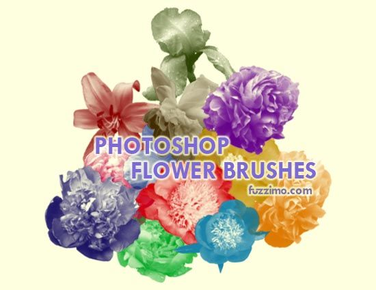 17 Best images about FramEs, LabEls, clipaRt for postEr ...