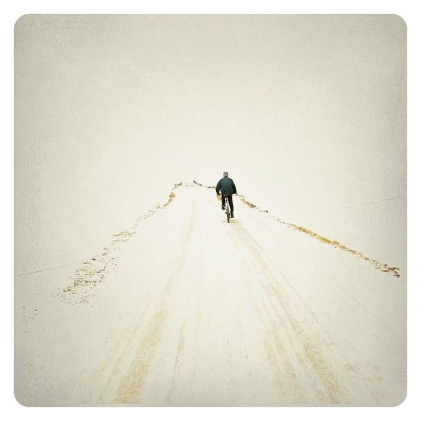Snowy day - @June J- #webstagram
