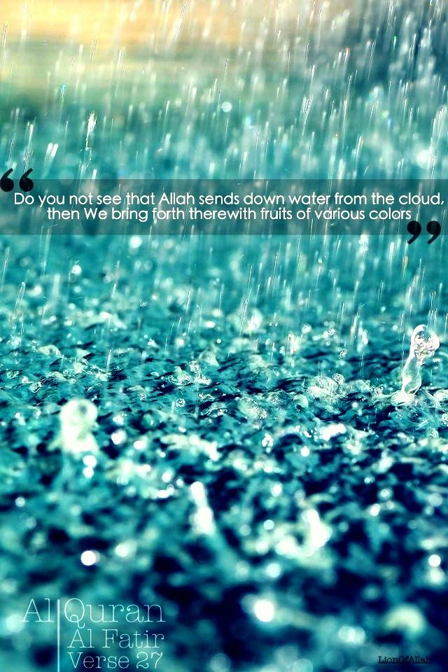 rains muslim Have you ever thought of rain in what way we can think several aspects of rain let us have a look at how it rains.