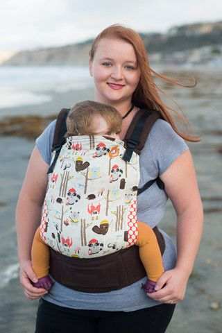 baby carrier for hiking ebay