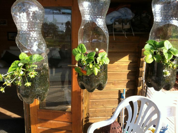 27 best tea pot hanging basket planter images on pinterest