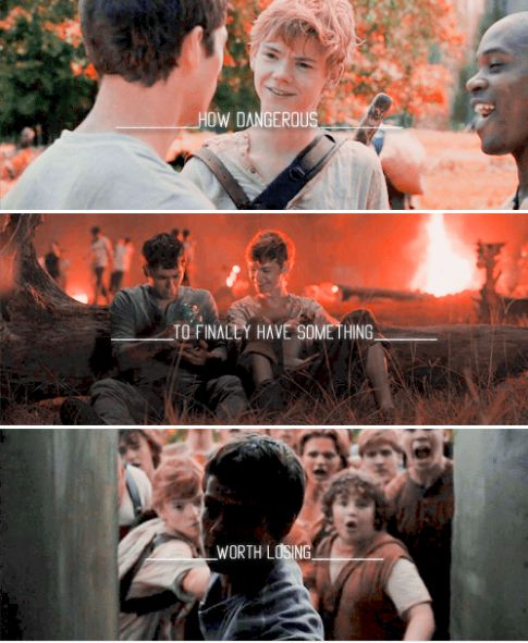 the maze runner - thomas and newt