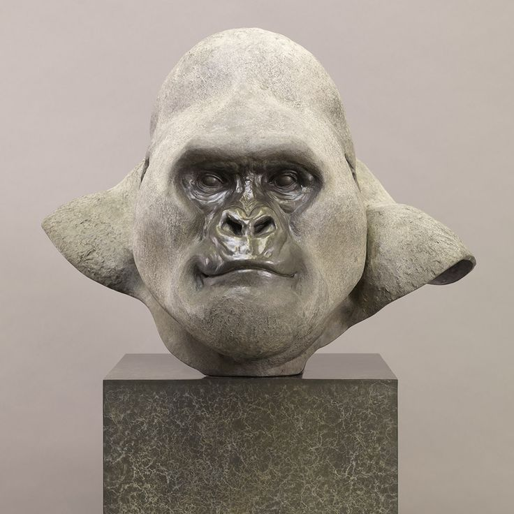 Горная горилла (Silverback)