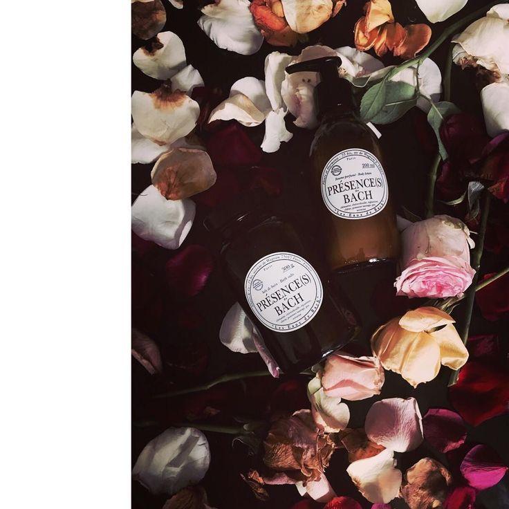 LES FLEURS DE BACH  Bachblüten sind Naturprodukte, die aus Wiesenblumen und Quellwasser bestehen. Durch sie kann das innere Gleichgewicht und emotionale Harmonie wiederhergestellt werden.  #lesfleursdebach #beautyandstylehamburg #klosterstern #eppendorf #hamburg #040