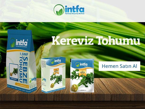 Kereviz Tohumu Siparişleriniz için    (0332) 342 59 92 - www.intfarming.com/sebze-tohumlari/kereviz-tohumu