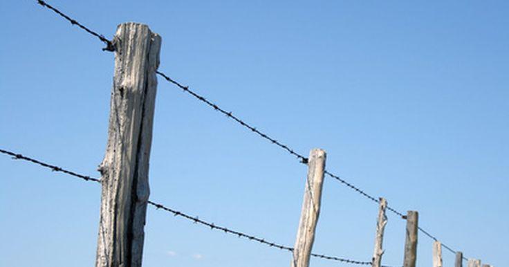 Cómo probar una cerca eléctrica con un medidor eléctrico. Las cercas eléctricas son ideales para mantener animales grandes en un espacio confinado sin la molestia de construir una cerca grande. Aunque las cercas eléctricas parecen peligrosas, la cantidad de corriente que pasa a través del alambre hace apenas un poco más que actuar como disuasivo. Cuando necesitas asegurarte de que la cerca esté ...