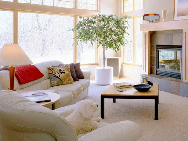charming natural living room decoration idea