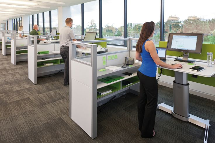 Height Adjustable Individual Desks Modern Office Space