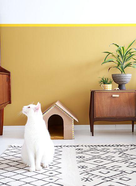 IKEA is er ook voor katten.😺 World Cat Day! Creëer een waar kattenparadijs.