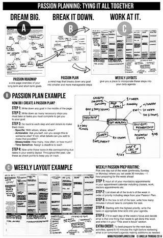 Passion Planner 2015 Preview | zumba | Passion planner