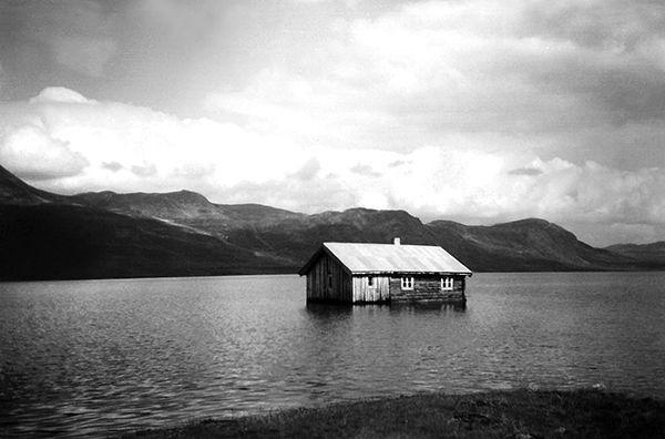 Nr. 36. Etter oppdemminga av Gyrinosvatnet i 1959. Utlånt av Gro Haga