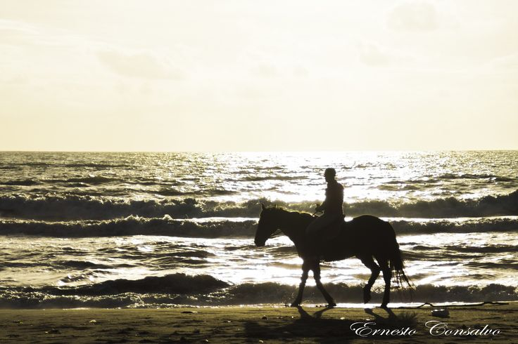 Horse Riding by Ernesto Consalvo on 500px
