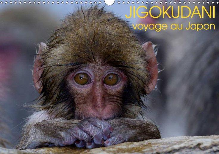 JIGOKUDANI voyage au Japon - CALVENDO