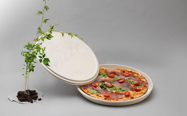 Pizza box bagasse