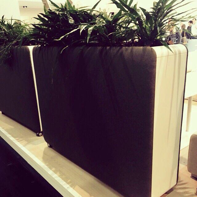 Leuke verrijdbare plantenbakken voor op kantoor!