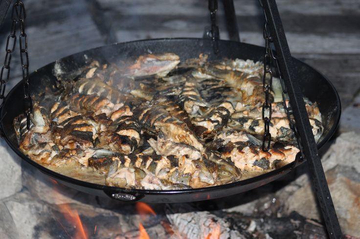 Lavofest i Tordalen, stekt nytrukket fjellørret er ikke vont.