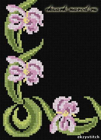 Border with irises - Decorative Design - Cross Stitch - Free Patterns -