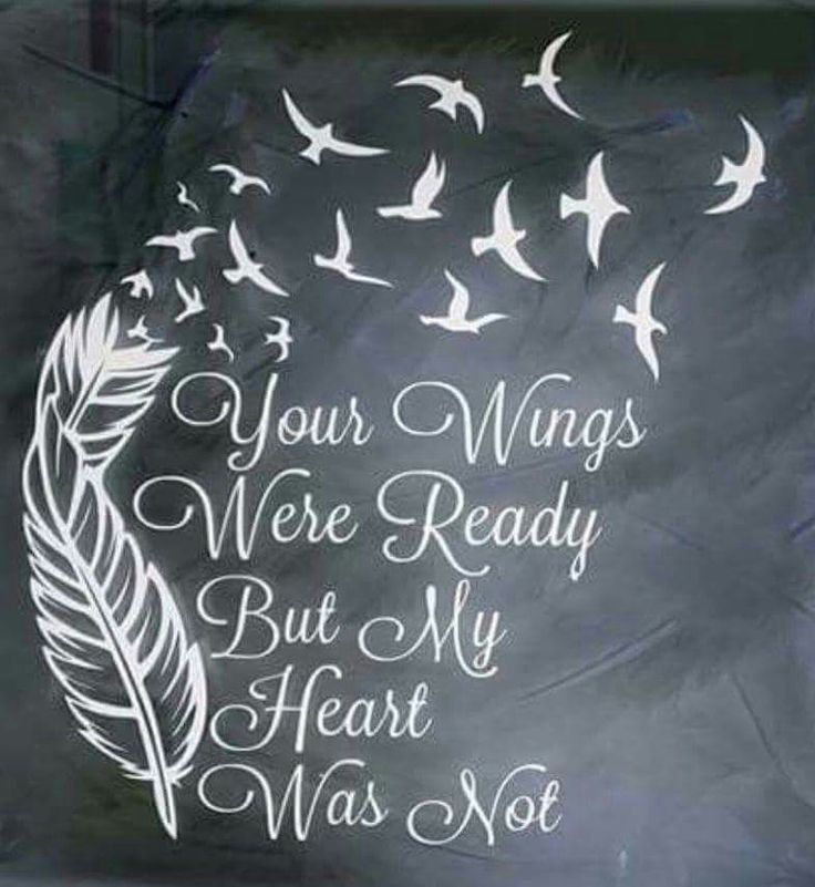 Memorial... 'Your Wings Were Ready But My Heart Was Not