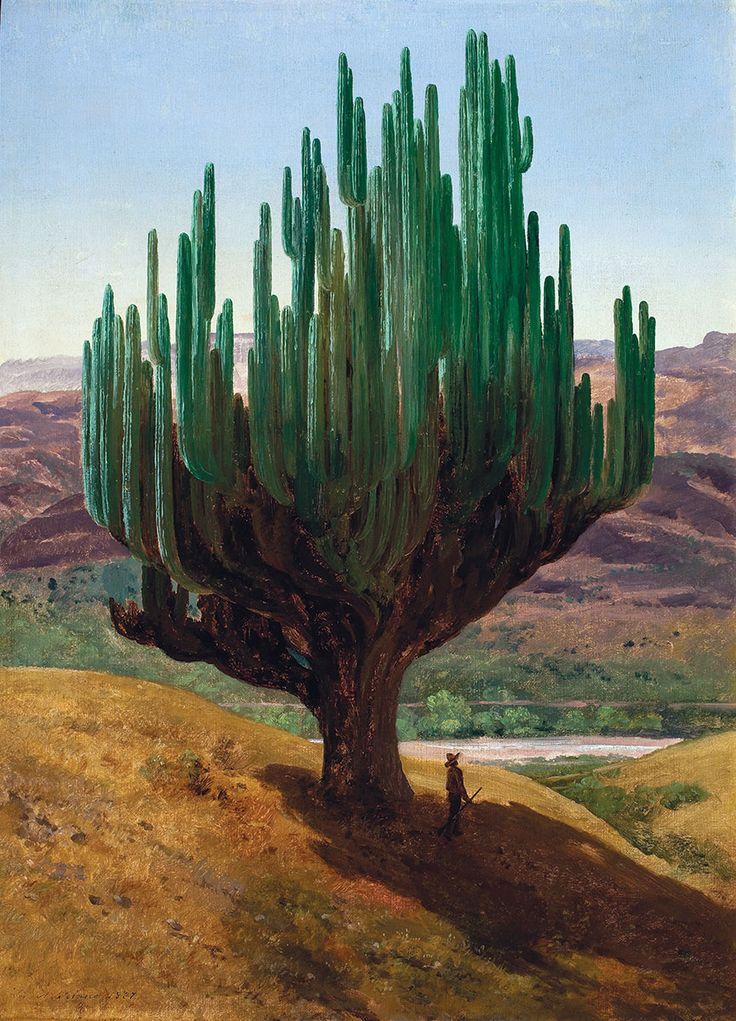 José María Velasco (1840-1912) Cardón (Cercus Candelabrus) del pueblo de Tecomavaca, 1887 Óleo sobre papel, 62.5 x 46.3 cm Museo Nacional de Arte, INBA