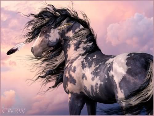 ...beautiful markings.  Oh my word. My dream horse ^^^