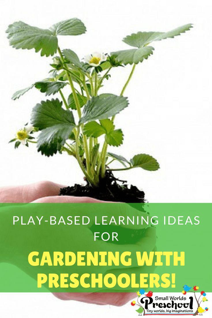 2328 best Preschool Science Ideas images on Pinterest | Activity ...