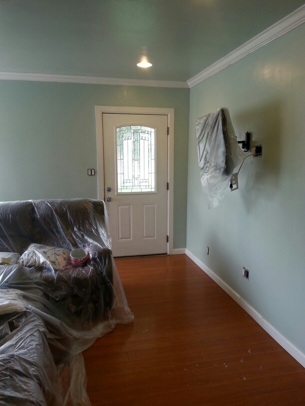 "Guest Bedroom Flooring Ideas ""valley Mist"" By Behr 