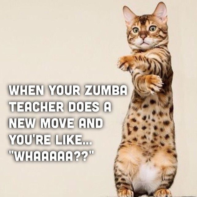 "When your Zumba teacher does a new move and you're like ""Whaaaa??"" (Zumba humor)"