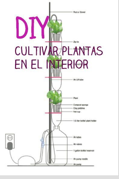 187 best hierbas verduras y hortalizas cultivo de - Cuidado de plantas de interior ...