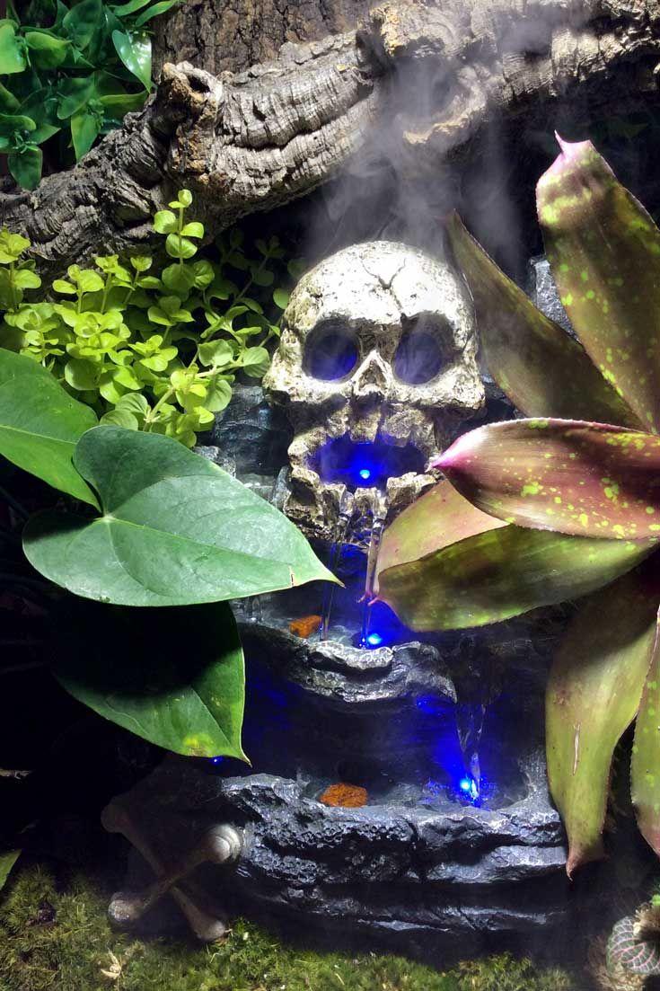 36 Best Terrarium D 233 Cor Images On Pinterest Reptiles
