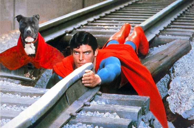"""""""Lily and Superman prevent a train crash"""". Photo Manipulation. 2012."""