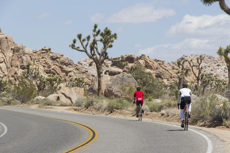 Andar De Bicicleta, Equitação, Ciclistas, Atividade