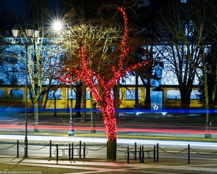 Świąteczny Białystok :) #Święta #CzerwoneDrzewa #Bialystok fot. Dawid Gromadzki