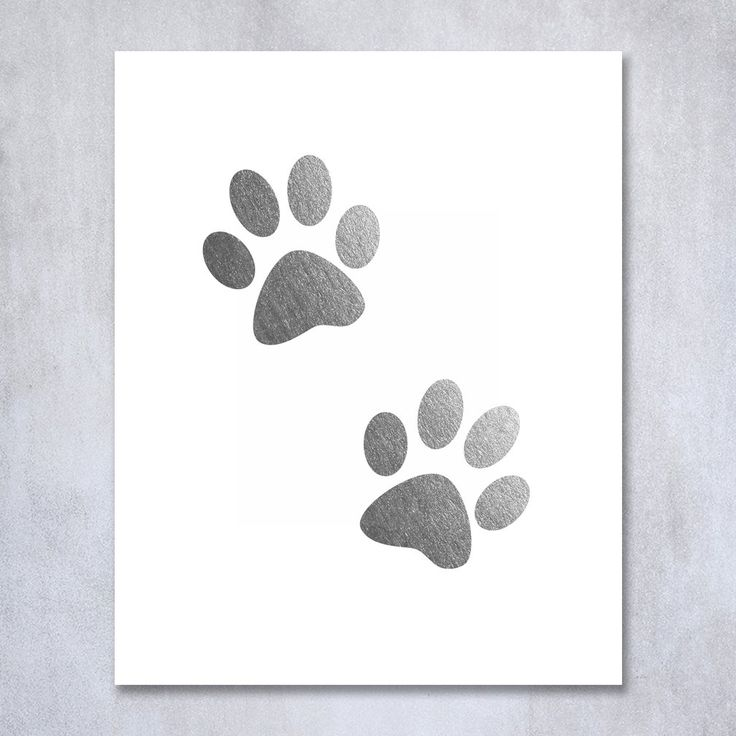 Paw Prints Silver Foil Decor Dog or Cat Person Home Wall Art Print Animal Lover Metallic Poster 8 inches x 10 inches. Digibuddha(TM) real foil art prints are made by hand in our small shop just outside of Philadelphia. • Made with gorgeous luxe silver foil and premium pure white matte card stock. • Prints arrive unmatted, ready to be placed in your favorite frame. • Original design: all Digibuddha(TM) paper goods are exclusively created in-house by our design team. /// Paw Prints ///...
