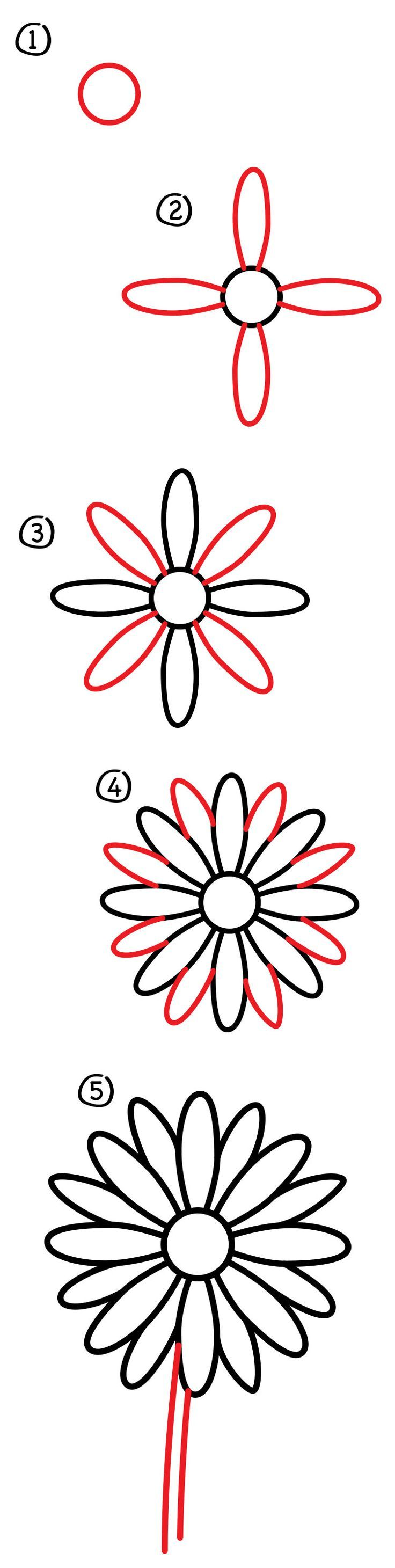 How To Draw A Daisy Flower  Art For Kids Hub