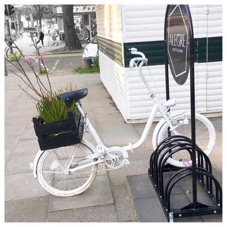 auf gehts ⚪️�� #insidemee#zuhause#katzen#katzengehenimmer#schnickschnack#kram#bücher#autos#streetartladys#frauen#träume#schicki#blingbling #bike#fahrrad http://unirazzi.com/ipost/1513597621812770099/?code=BUBYQSFBrUz