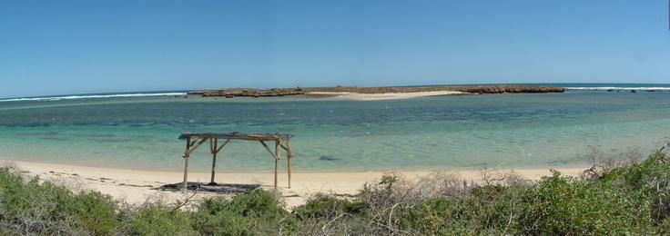 The island just off Quobba : http://www.wanowandthen.com/blowholes.html