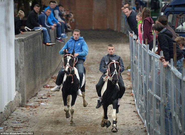 Visitors at the fair gather around and clamber on to the fences to get a better look at th...
