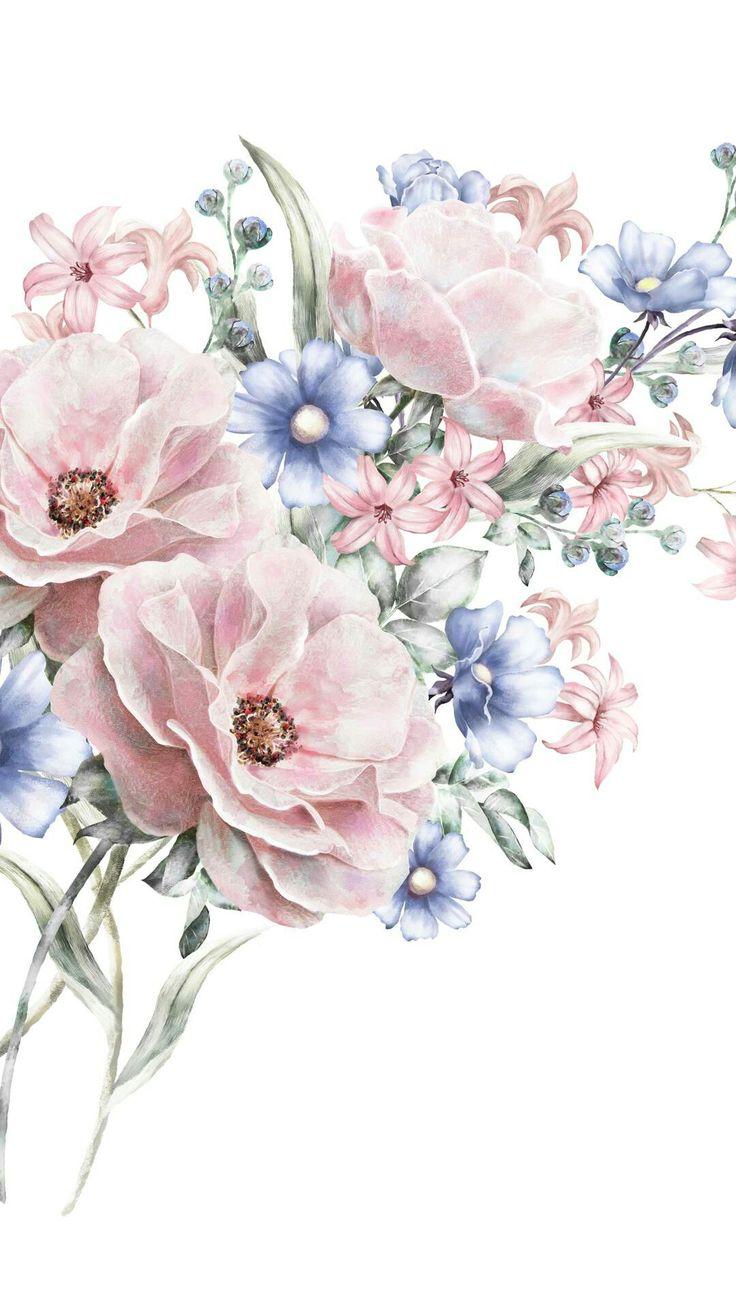 Цветы для открыток рисованные, днем рождения стиле