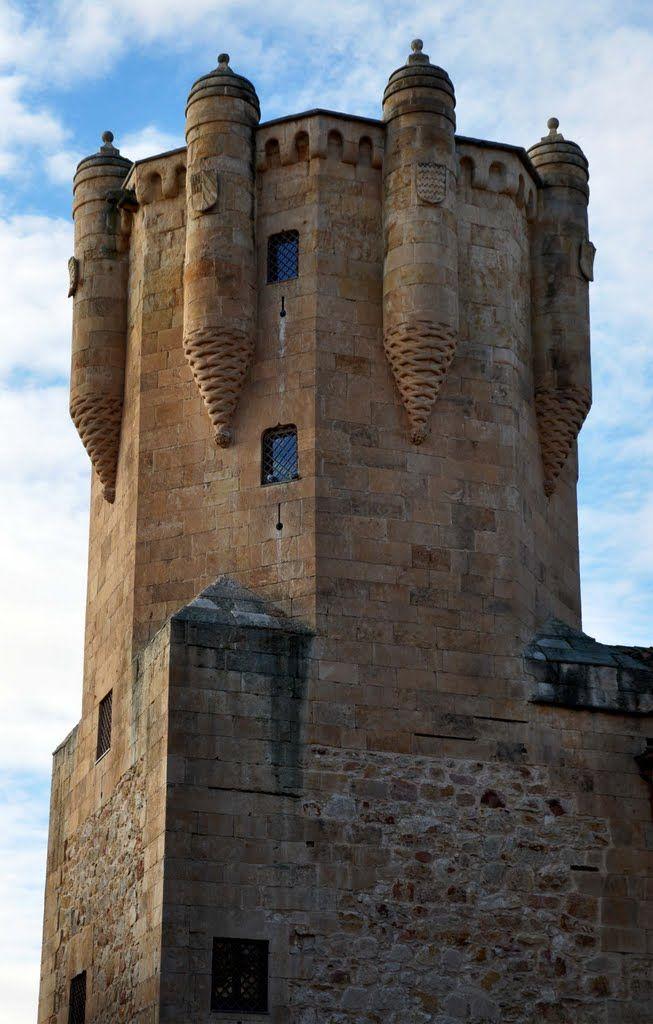 """CASTLES OF SPAIN - Torre del Clavero, Salamanca, Castilla y León. Resto de la casa señorial del clavero (""""custodio"""") de la Orden de Alcántara. La torre bella y airosa de líneas, es de planta cuadrada con unos 28 metros de altura, tiene esculpidos los escudos de los Sotomayor y de los Anaya, ello plantea la duda de si se construyó por orden de don Francisco de Sotomayor, clavero de la Orden de Alcántara, en 1470, o de don Diego de Anaya (obispo de Salamanca)."""