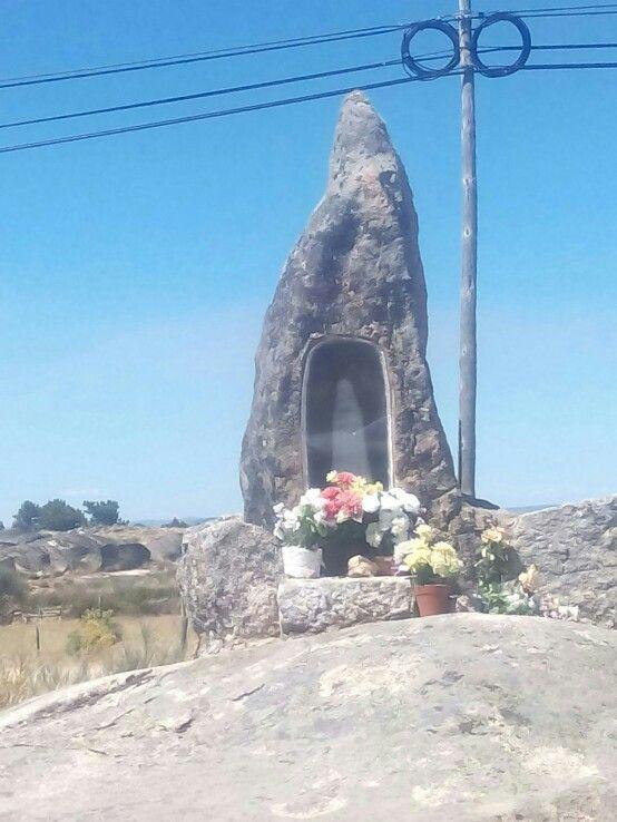 Mata de Lobos. Portugal.